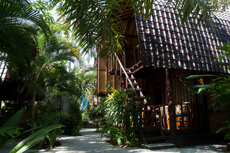 Surf Bali Camp Single Room
